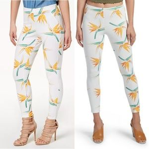 HUE Tropical Floral Simply Stretch Skimmer Pants